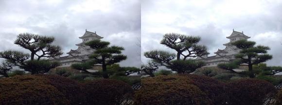 姫路城西の丸高台からの天守閣①(平行法)