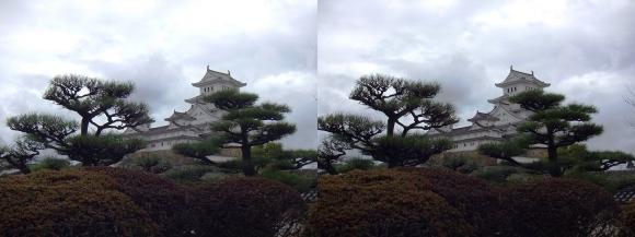 姫路城西の丸高台からの天守閣①(交差法)