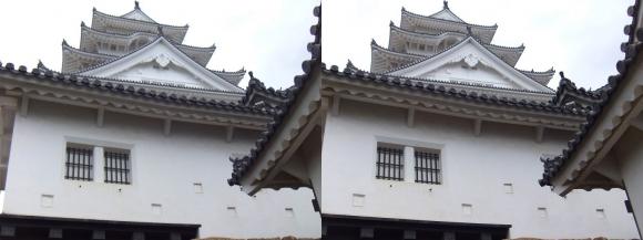 姫路城備前門からの大天守(交差法)