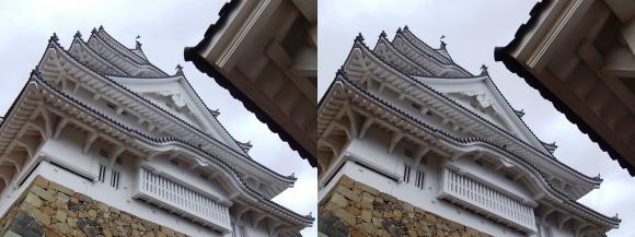 姫路城二の丸からの大天守②(交差法)