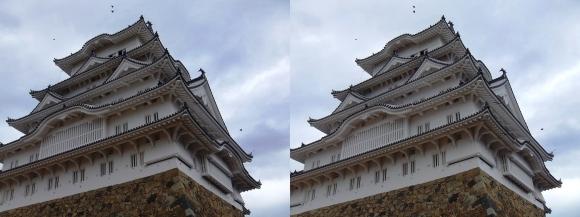 姫路城備前丸からの大天守①(平行法)