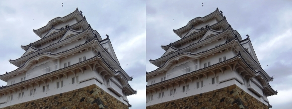 姫路城備前丸からの大天守①(交差法)