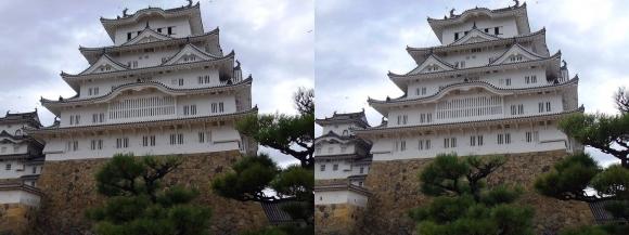 姫路城備前丸からの西小天守・大天守②(平行法)