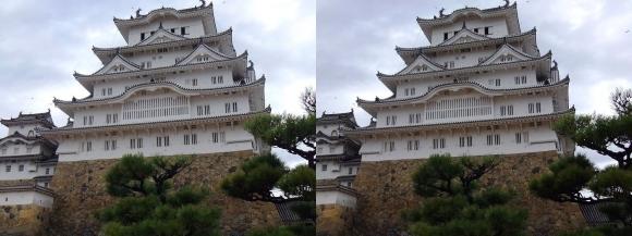 姫路城備前丸からの西小天守・大天守②(交差法)