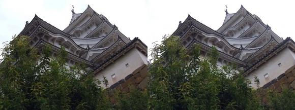 姫路城二の丸からの西小天守・大天守①(平行法)