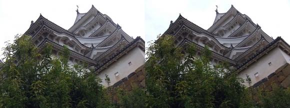 姫路城二の丸からの西小天守・大天守①(交差法)