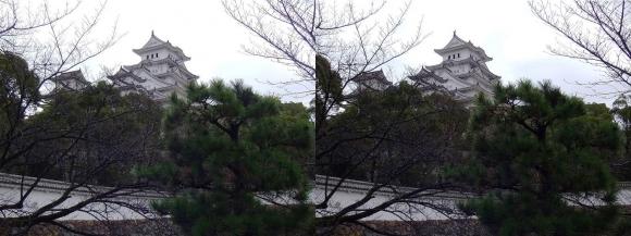 姫路城ろの門西南方土塀からの天守閣(交差法)