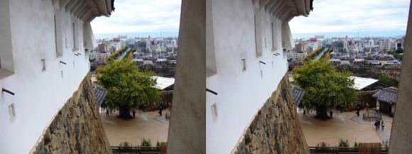 姫路城ニの渡櫓からの大手町通り(交差法)