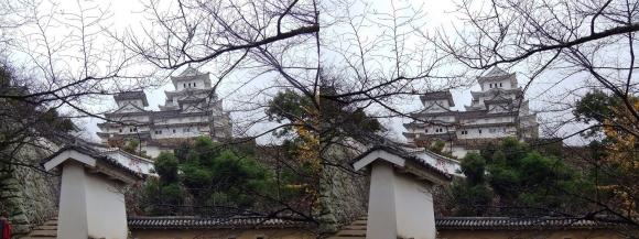 姫路城はの門南方土塀①(交差法)