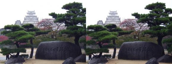 姫路城三の丸広場①(交差法)
