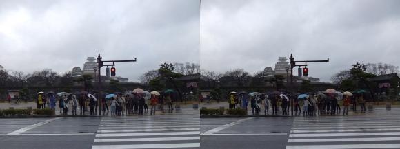 姫路城前横断歩道(交差法)