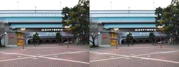 阪神甲子園球場外観⑧(平行法)