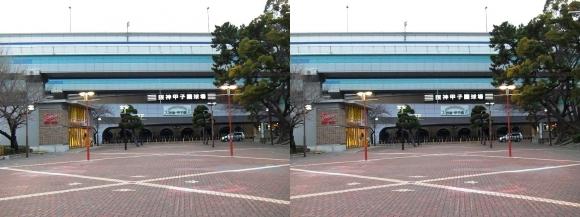 阪神甲子園球場外観⑧(交差法)