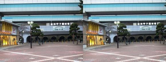 阪神甲子園球場外観⑦(平行法)