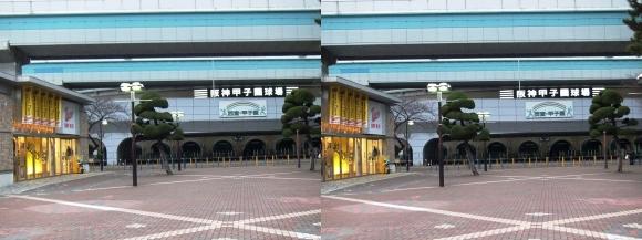 阪神甲子園球場外観⑦(交差法)