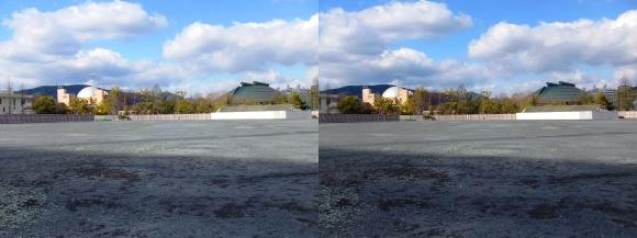 旧広島市民球場跡地(交差法)
