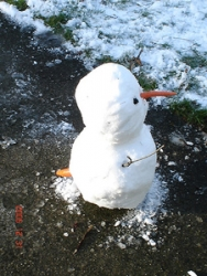 雪画像02