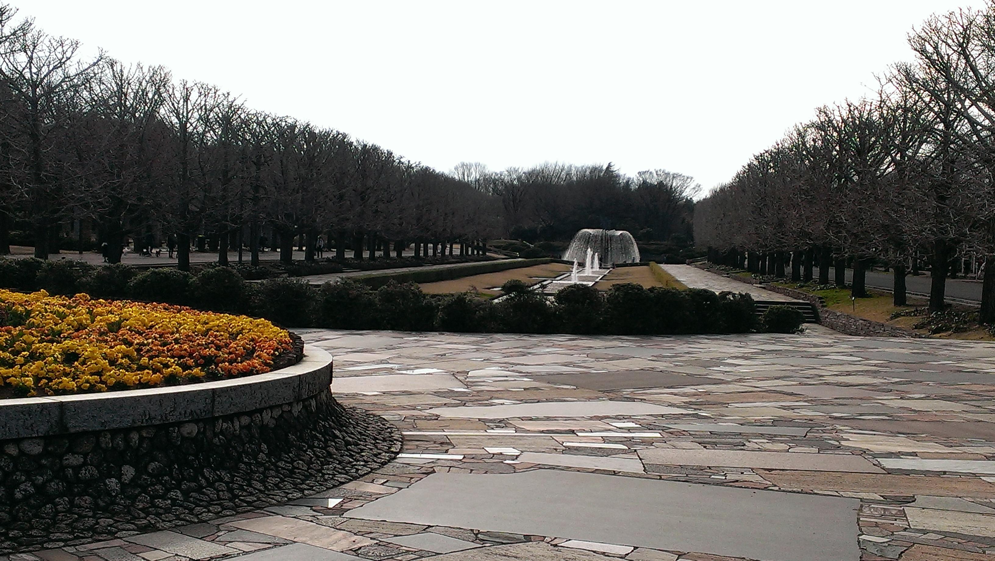 昭和記念公園0321