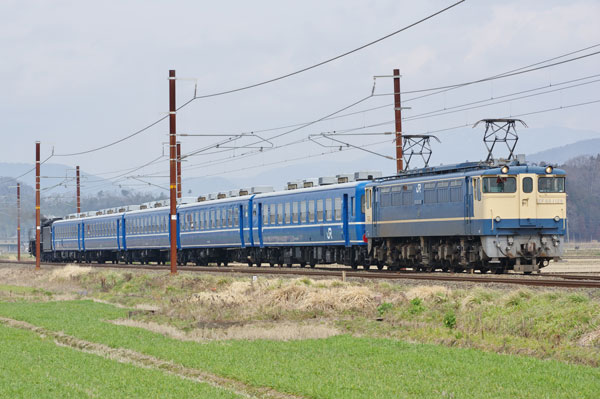 160306kawake-torahime-kai92.jpg