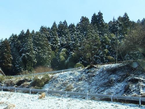 雪景色160313-1