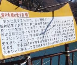 夢の掛け橋160320-1