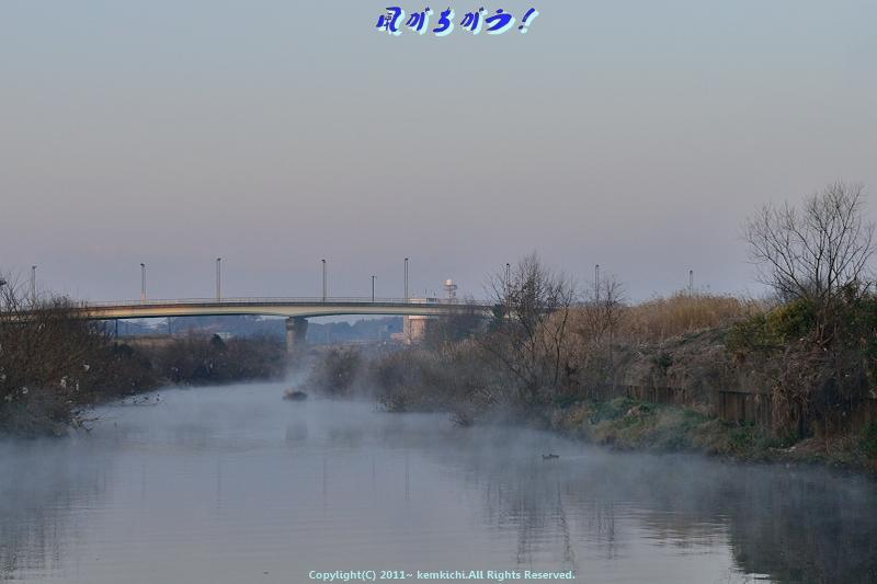 川霧 004