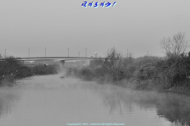 川霧 003
