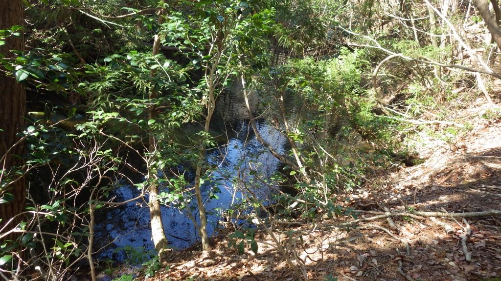 1346 幻の池