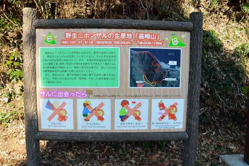 高崎山 (3)