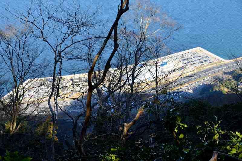 高崎山 (16)