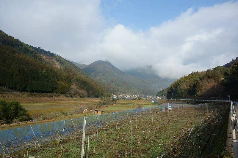 小鹿田焼 (3)