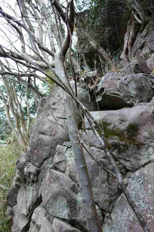 平家岩 (8)