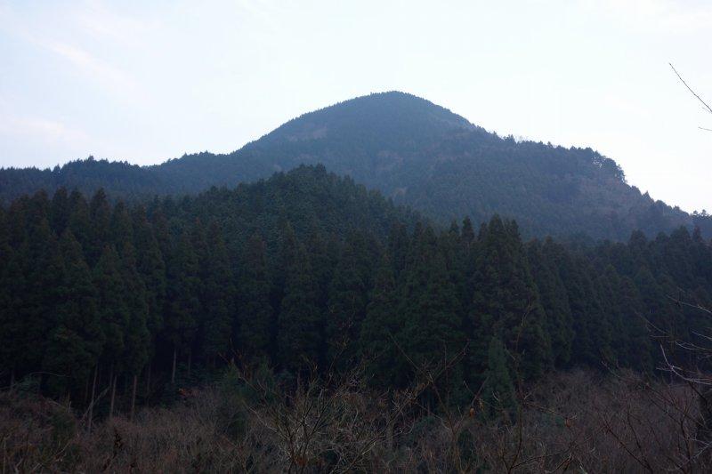 とんがり山 (18)