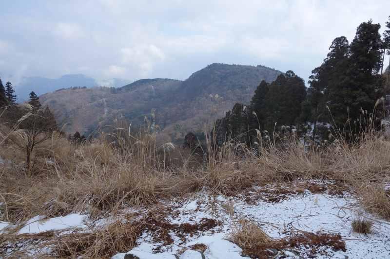 所小野山 (3)