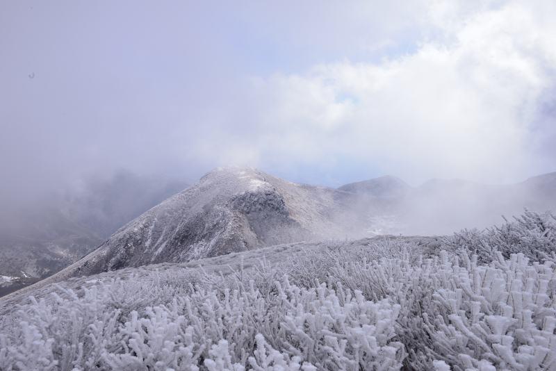 天狗ケ城・中岳 (45)