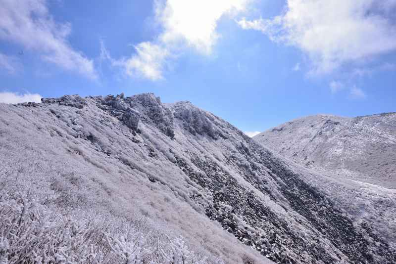 天狗ケ城・中岳 (90)