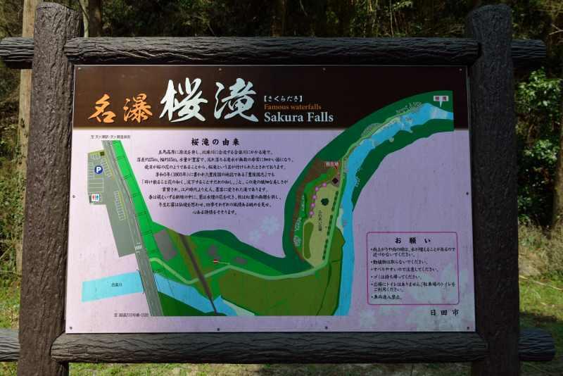 桜滝 (1)