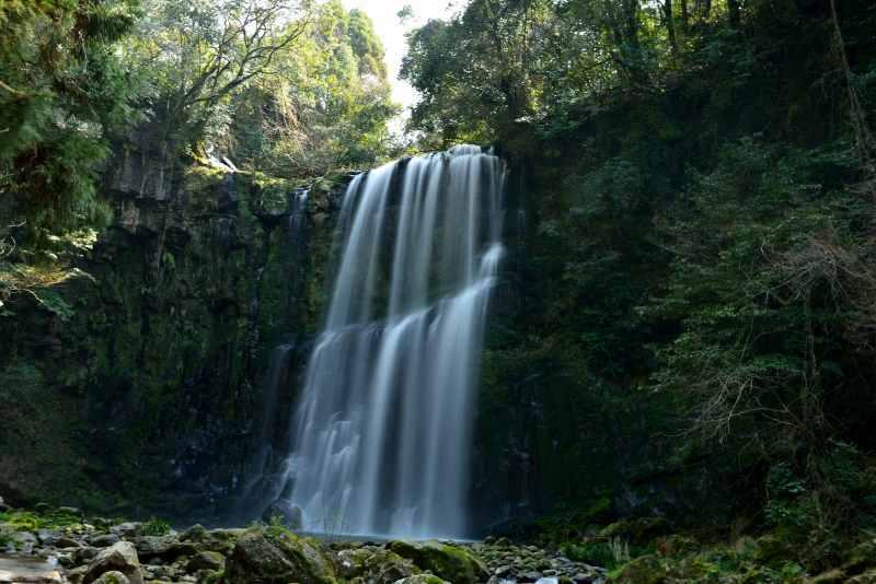 桜滝 (2)