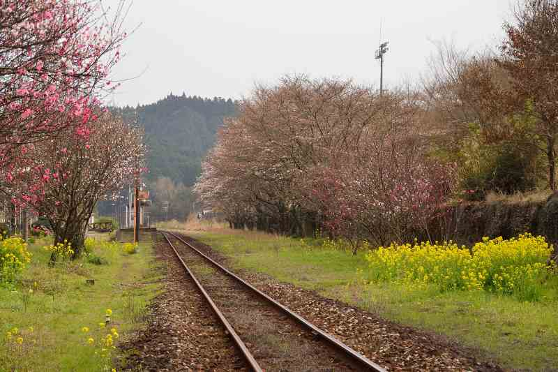 JR宝珠山駅 (1)