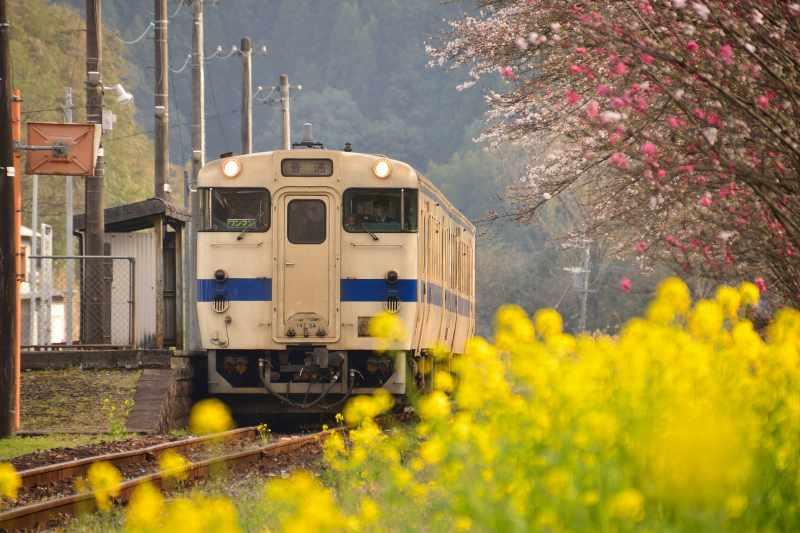 JR宝珠山駅 (10)