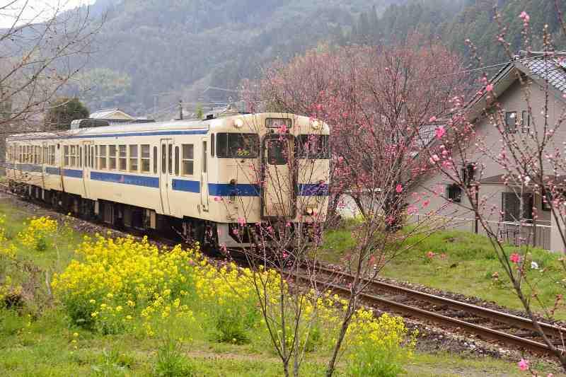 JR宝珠山駅 (22)