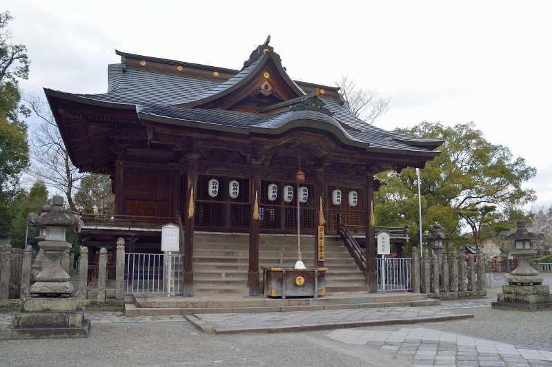 大原しだれ桜 (9)