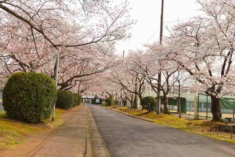 160330三隈高校 (2)