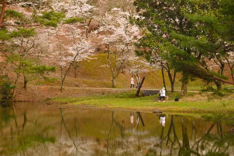 160330萩尾公園 (7)