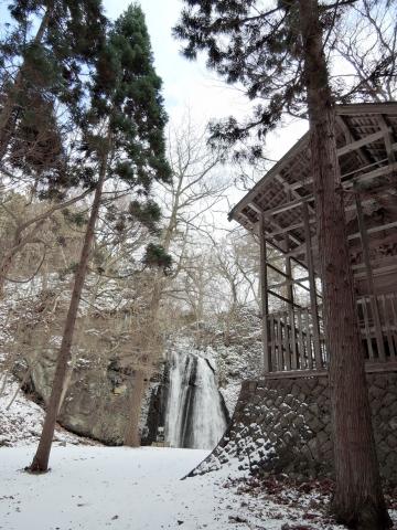 白滝20160100