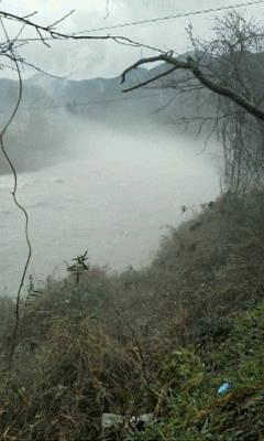 洲原トンネル近くの川霧