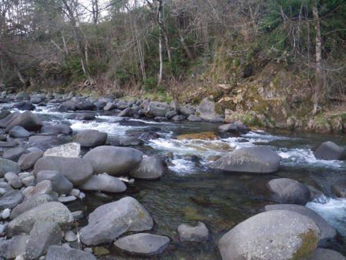 気良川の渓相