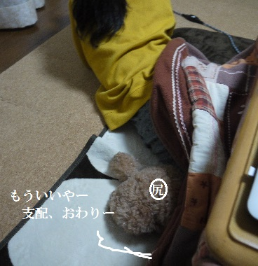 P1430854(1).jpg