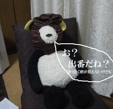 P1440539(1).jpg
