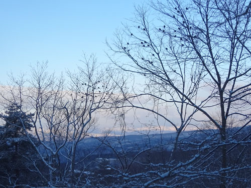 久しぶりの雪景色!2